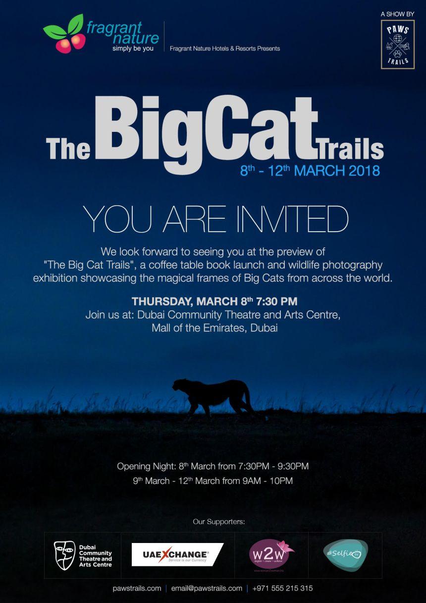 Cat Trails Invite.jpg