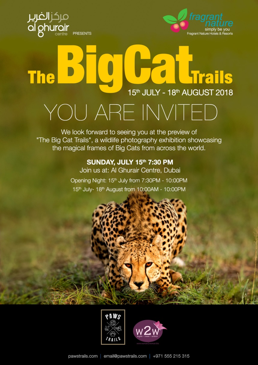 BigCatTrails_Invite_03.jpg