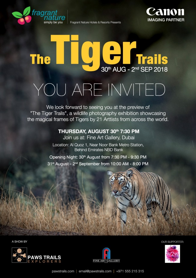 TigerTrails_Invite (1).jpg