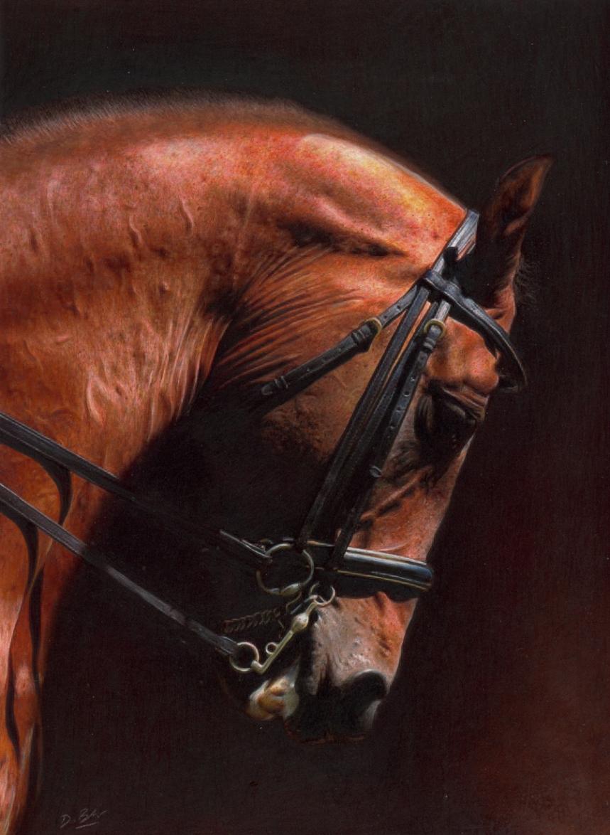 classical horse.jpg